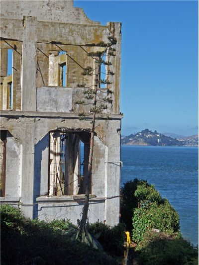 Picture Of Alcatraz At Close