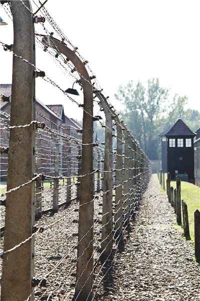 Picture Of Auschwitz Birkenau Prison Camps