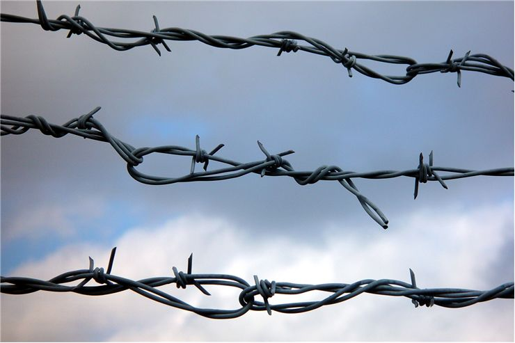 Picture Of Jail Wire